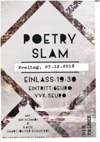 Poetry Slam mit Jan Schmidt und Katze